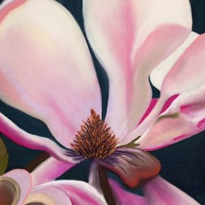 Magnified Magnolia by Polly Castor