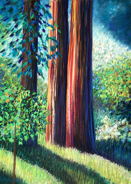 Old Growth, pastel by Polly Castor