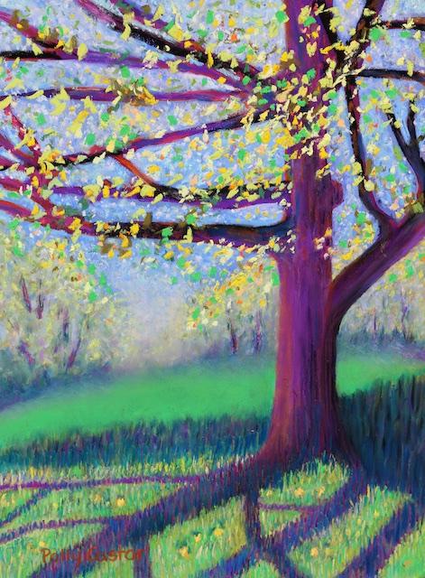 Spring Shadows at New Pond Farm by Polly Castor