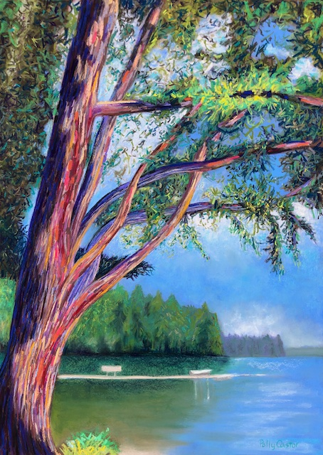 Braided Branches on Long Lake, by Polly Castor